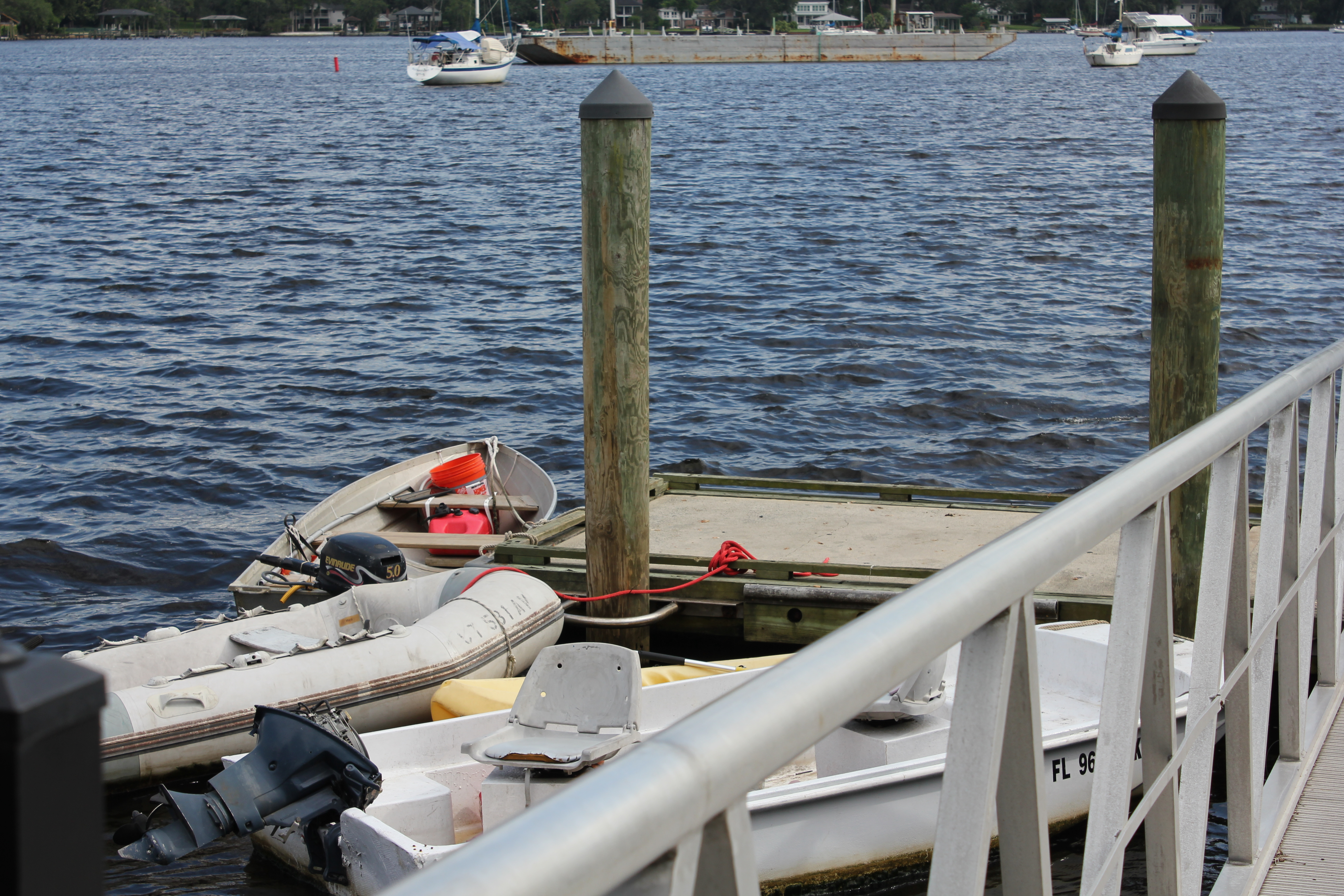 Squatters in Jacksonville Waters | FLORIDA FIELD NOTES